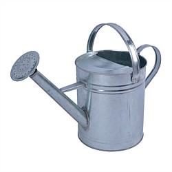 Noveau 9L Galvanised Watering Can